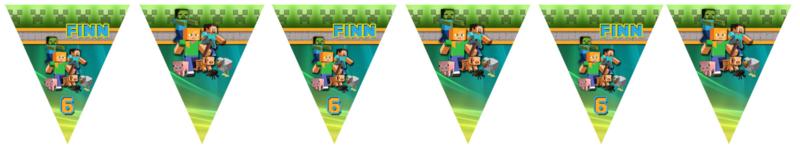 Kinderfeest vlaggenslinger Minecraft Colours