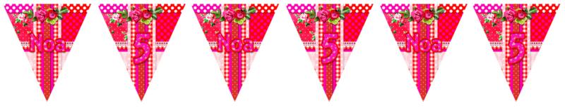 Kinderfeest vlaggenslinger Pipperig Roses