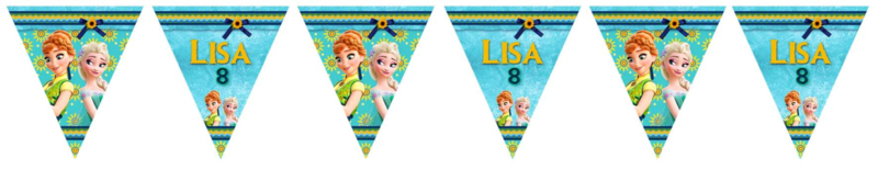 Kinderfeest vlaggenslinger Frozen Fever