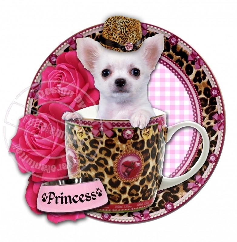 Strijkapplicatie Teacup Chihuahua! luipaardprint