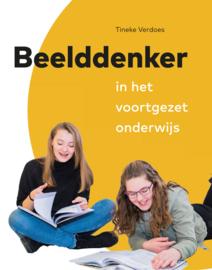 Boek: Beelddenker in het voortgezet onderwijs