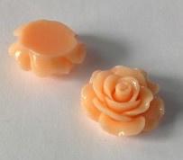 Plakroosje plakvlak 16 mm zalm roze