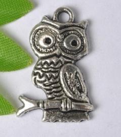 10 x Tibetaans zilveren bedel van een uil 22,5 x 14,5mm