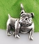 4 x Tibetaans zilveren bedeltje van een bulldog 18x14mm