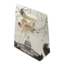 Cadeautasje kraft papier afmeting: 165 x 125 x 56mm met strikje Washington DC