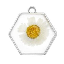 1 x  Bedels met gedroogde bloemetjes hexagon Silver-white