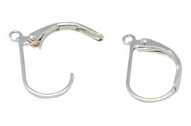 2 stuks Rvs oorbellen haakjes 15mm x 10mm oogje: 1mm