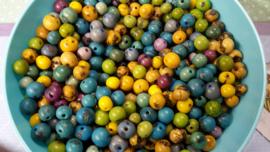 10 stuks mix houten kralen verschillende kleuren en maten  6~10 mm Gat c.a. 1~2 mm