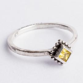Ringen van echt sterling 925 zilver