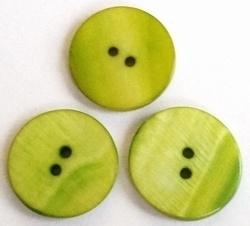 Per stuk schelpkraal rond Groen knoopmodel 20 mm