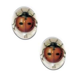 2 x Glas Cabochon 18x13 mm Ladybug