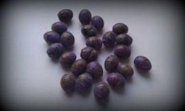 10 Stuks glaskraal India paars met werkje 12 mm