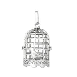 Grote tibetaans zilveren 3D hanger van een vogelkooi met vogel 37 x 25mm gat: 3,5x8mm Binnen diameter: 18 x 23mm