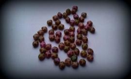 10 Stuks facetkralen bruin/roze glans 8 mm