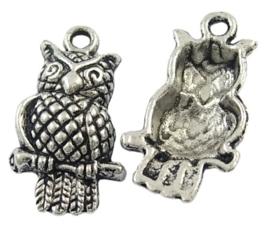 Tibetaans zilveren bedel van een uil 22mm x 12 x 4,5mm, gat: 2mm
