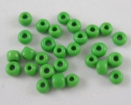 Zakje mooie rocailles 20 gram Seed Beads 8/0 3mm groen