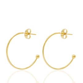 2x Roestvrij stalen (RVS) Stainless steel oorbellen/oorstekers creolen Goud 20mm