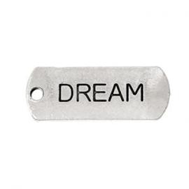 2 x Metalen Bedel Antiek Zilver Dream maat: 21x8 mm