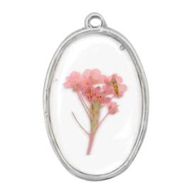 1 x  Bedels met gedroogde bloemetjes ovaal Silver-pink