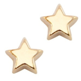 2 x Floating Charms Ster Goud 6 mm
