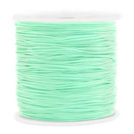 Rol met 90 meter Macramé draad 0.8mm Light turquoise green (kies voor pakketpost)