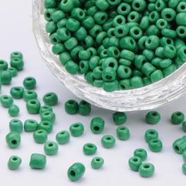 Zakje mooie rocailles 20 gram Seed Beads 6/0  4mm gat: 1,5mm Pale Green