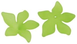 10 x Prachtige acryl bloem kelk 29 x 27 x 8mm Gat 2mm lime
