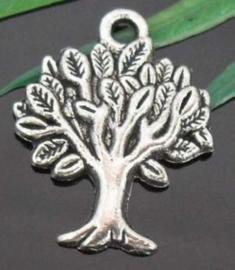 4 x Tibetaans zilveren bedel van een boom 21,7 x 17,2mm gat: 1mm