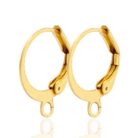 2 stuks Roestvrij stalen (RVS) stainless steel sluitbare oorhangers met oog Goud ca. 15mm
