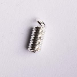 10 stuks metalen veer veterklemmen 6mm