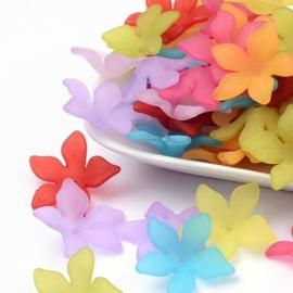 10 x Prachtige acryl bloem kelk 29 x 27 x 8mm Gat 2mm mix  assortiment