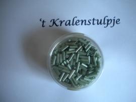 Pracht - glasstiften buisjes met zilverinslag 6 mm 17 gram groen