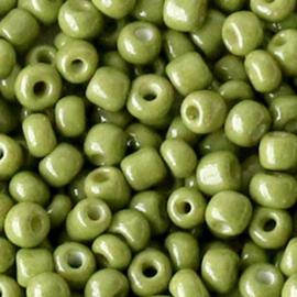20 gram Glaskralen Rocailles 6/0 (4mm) Moss green