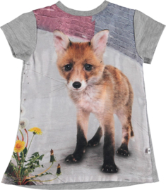 "MOLO / Jurkje Corinna ""Urban fox baby"", BABY"