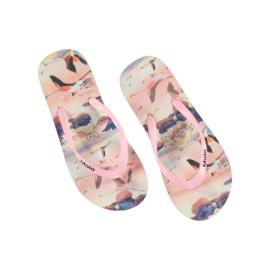 "MOLO / Slippers ""Zappo, Flamingo"" UITVERKOCHT!"