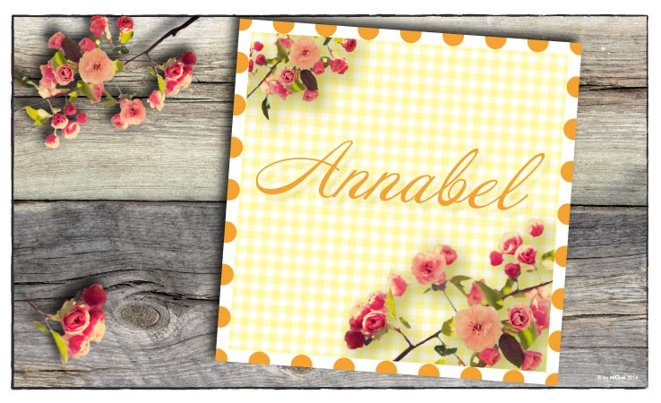 geboortekaartje Annabel