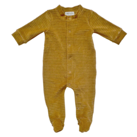 Boxpakje Corduroy Sweet Honey - Witlof for kids - maat 50/56
