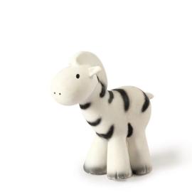 Tikiri bijt- en badspeelgoed met rammelaar zebra