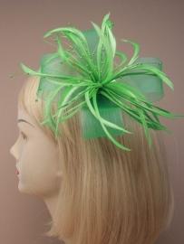 Decoratieve Fascinator Groen