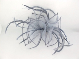 Grey Haircomb