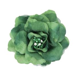 Groene Haarbloem