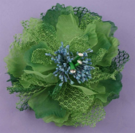 Fonkelende Haarbloem Groen