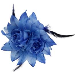 Haarbloem Blauw