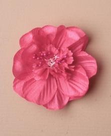 Haarbloem Fuchsia