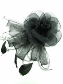 Zwarte Roos Fascinator
