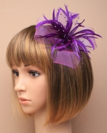 Decoratieve Fascinator Paars