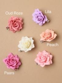 Kleine Peach Roos 2 stuks