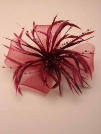 Decoratieve Fascinator Bordeaux