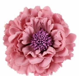 Mooie Haarbloem Oud Roze