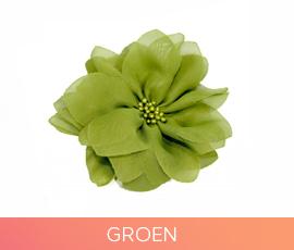 bloemen_07_groen.jpg